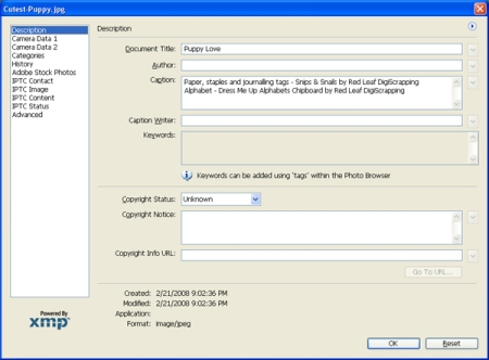 Photoshop Elements 6 File Info Screen